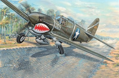 P-40F WAR HAWK SKALA 1/32
